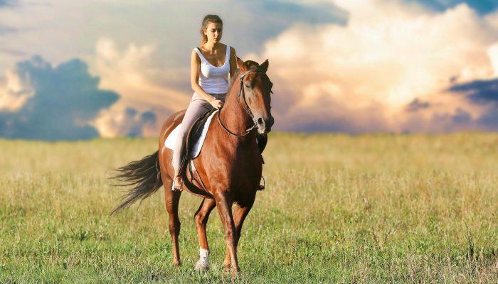 Equitación en Complejo Rural Valdepusa